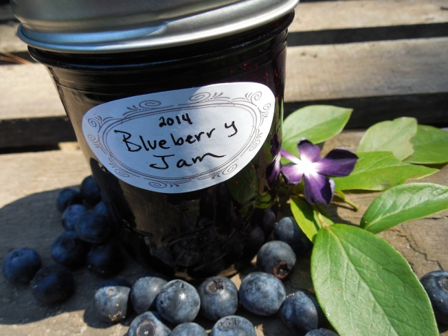 Easy Two Ingredient Blueberry Jam Recipe (No Canning Required!)