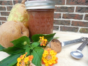 spiced sand pear butter recipe
